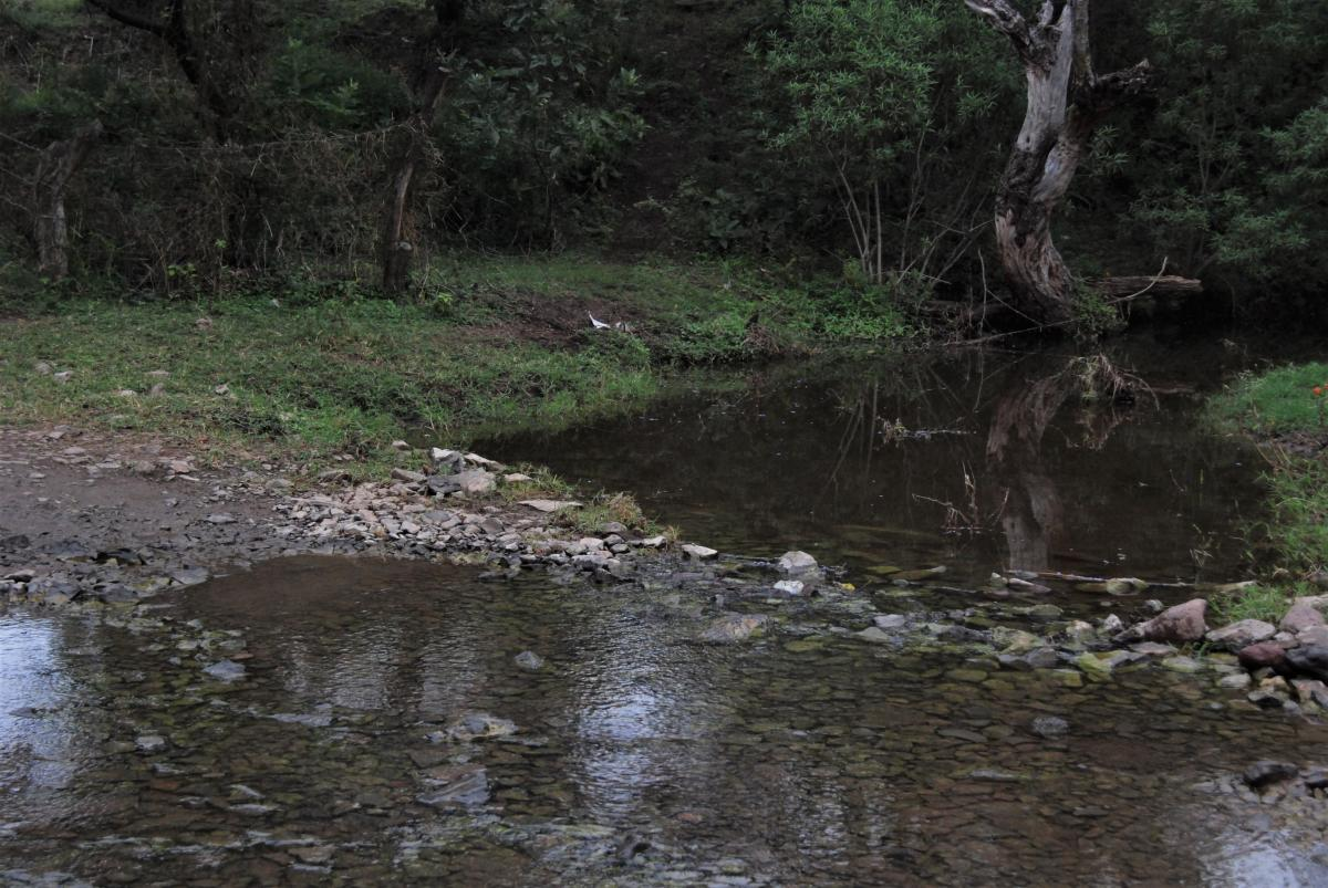 creek near Cocula