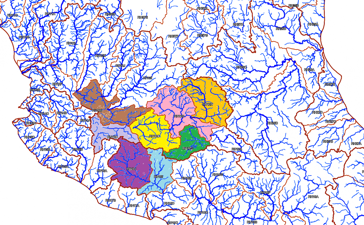 Middle and Lower Río Lerma, Upper and Lower Río Grande, Laguna Chapala, Upper Río Grande de Santiago, Rio Grande de Morelia and Río Laja subbasins