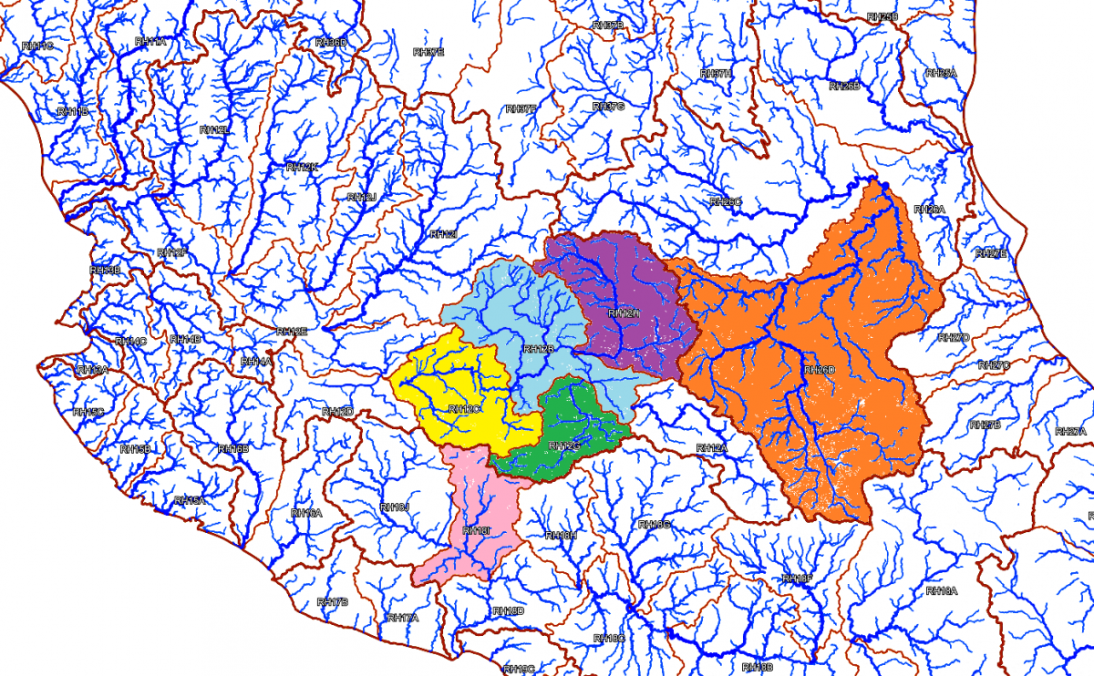 Río Grande de Morelia, Lower Río Grande, Middle and Lower Río Lerma, Río Laja and Río Moctezuma subbasins