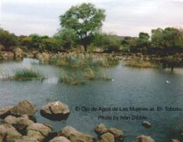 The spring at El Toboso in the middle of the 1990's
